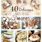 40 Delicious Ways to Eat S'mores Roundup!