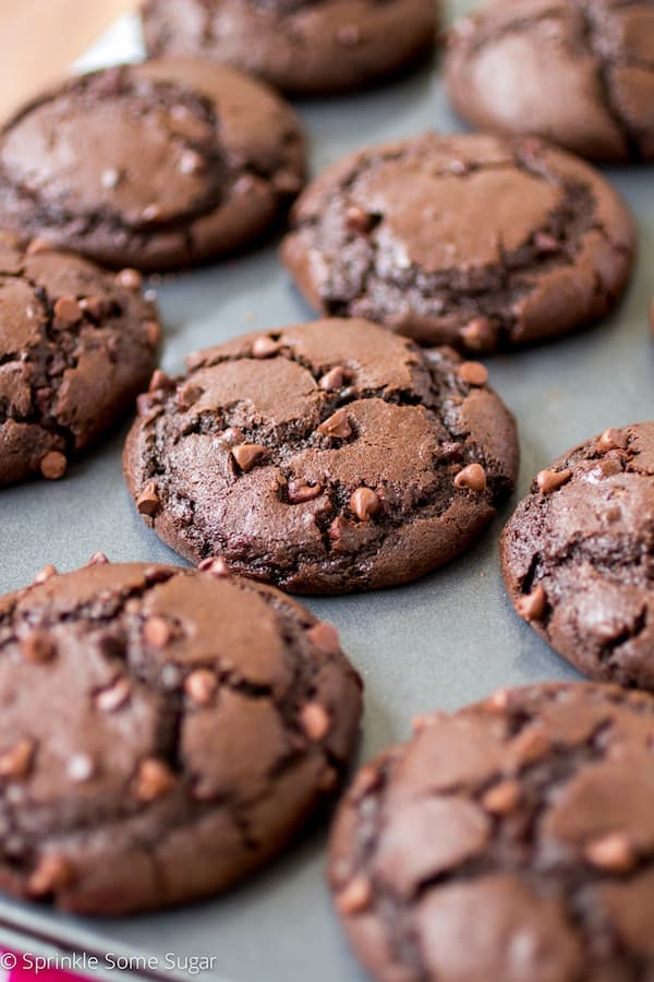 Fudgy Double Chocolate Chip Muffins
