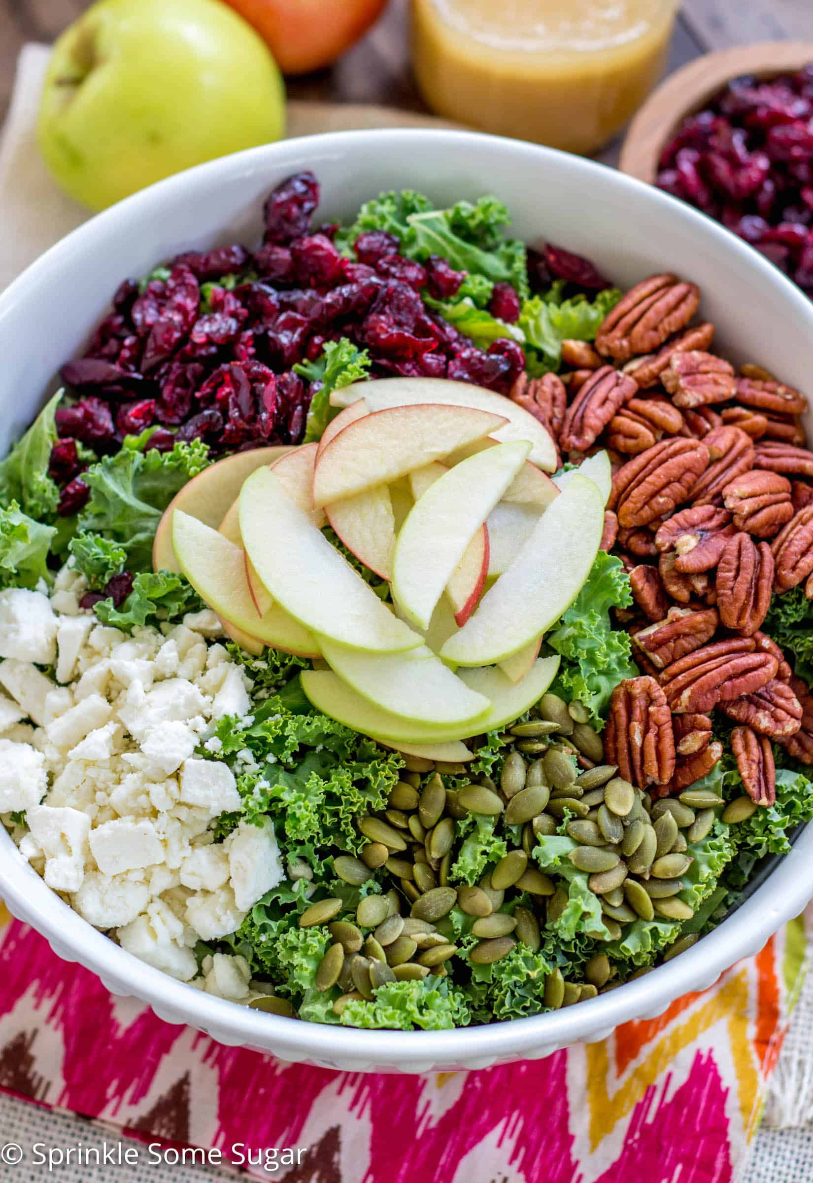 Fall harvest Cranberry Kale Salad - Kale salad loaded with dried cranberries, apples, pecans and topped with the most delicious apple cider dressing - the perfect salad for fall!